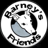 barney-friends-logo