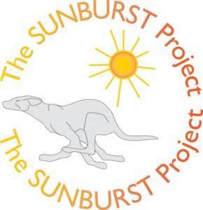 the-sunburst-project-img-01