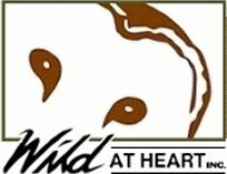 wild-at-heart-logo